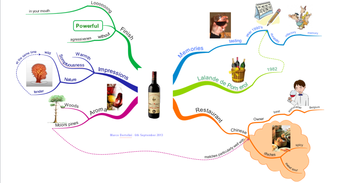 iMindMap mindmap about wine mapping